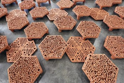 [新聞] 3D打印正在幫助重建香港珍貴的珊瑚礁